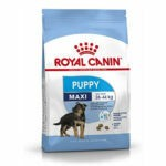 Royal Canin Maxi Puppy Food, 4 kg